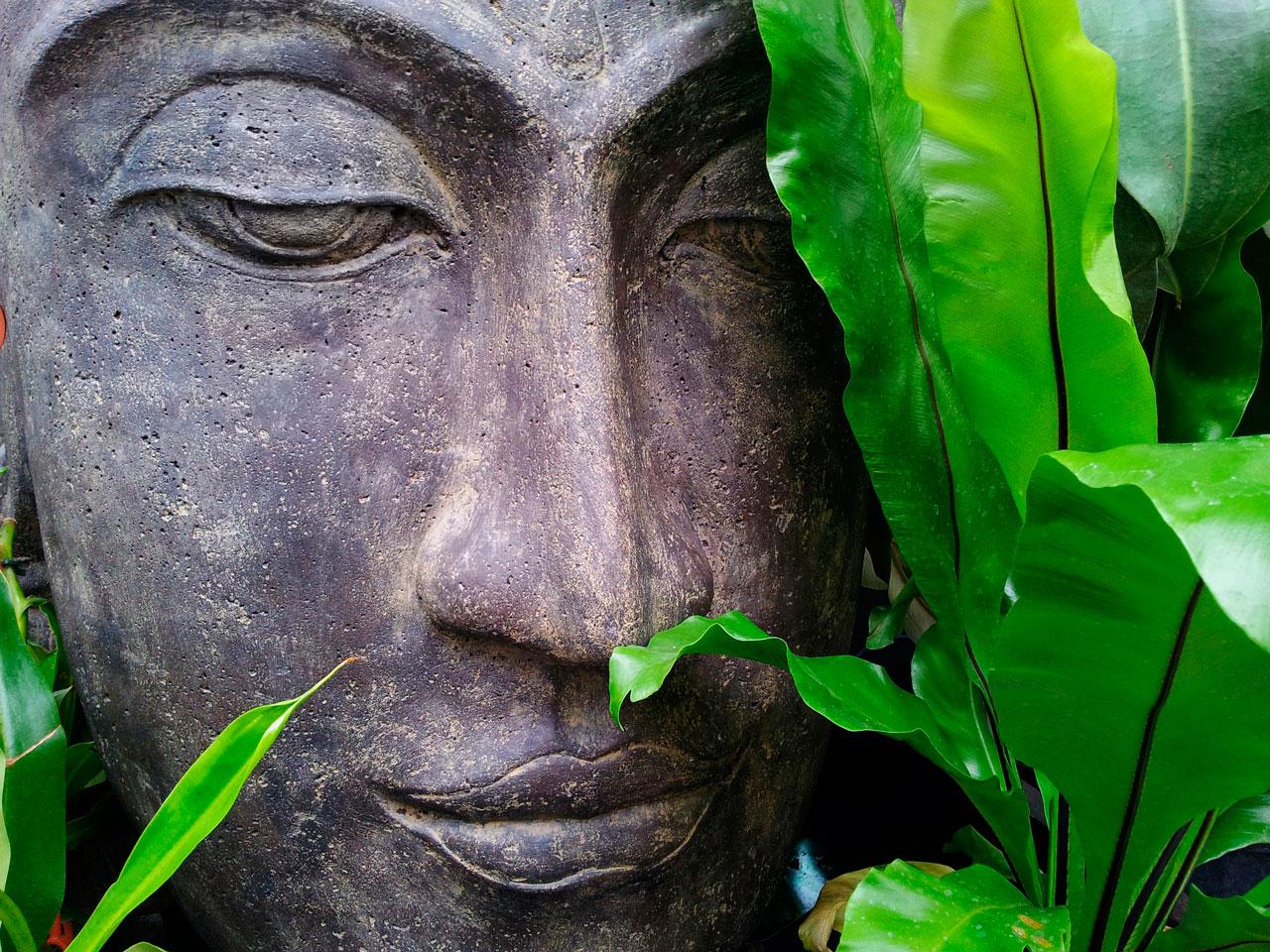 Buddha | Yoga me Chiemsee in Prien | Yoga Kurse & Yoga Therapie